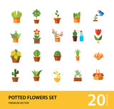 Potted Flowers Icon Set. Money Tree Cactus In Pot Cactus And Spray Bottle Plant Blooming Flower Chinese Peach Tree Cactus Red Flower Cactus In Flower Pot Tree In Pot Aloe Vera