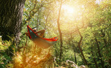 man relaxing in the hammock hanging among the trees in the forest - 229556464