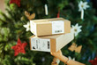two parcels in hand of woman near Christmas tree
