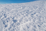 Macro shot of snow cover. Winter background. - 229576876