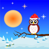 Owl on the tree with red hat ,Christmas concept.