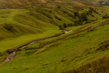 Landscape with green meadow in yorkshire Dale - 229636224