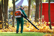 Leinwanddruck Bild - Working in the Park removes autumn leaves with a blower