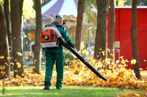 Leinwanddruck Bild Working in the Park removes autumn leaves with a blower