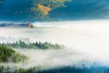 Carpathian mountain sunny landscape - 229688407