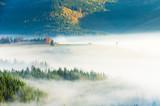 Carpathian mountain sunny landscape - 229688463