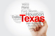List of cities in Texas USA state word cloud map with marker, concept background