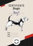 Dog show certificate with beagle - 229691898