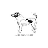 Hand drawn Jack Russel terrier - 229692072