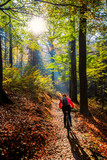 Cycling, mountain bikeing woman on cycle trail in autumn forest. Mountain biking in autumn landscape forest. Woman cycling MTB flow uphill trail. - 229700488