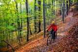Cycling, mountain bikeing woman on cycle trail in autumn forest. Mountain biking in autumn landscape forest. Woman cycling MTB flow uphill trail. - 229700692