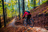 Cycling, mountain bikeing woman on cycle trail in autumn forest. Mountain biking in autumn landscape forest. Woman cycling MTB flow uphill trail. - 229700872