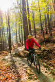 Cycling, mountain bikeing woman on cycle trail in autumn forest. Mountain biking in autumn landscape forest. Woman cycling MTB flow uphill trail. - 229701468