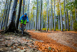 Mountain biker cycling in autumn mountains forest landscape. Man cycling MTB flow trail track. Outdoor sport activity. - 229703822
