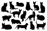 16 hand drawn cat silhouettes - 229708287