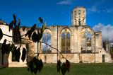 Die Abtei La Sauve-Majeure in Aquitanien - 229713064