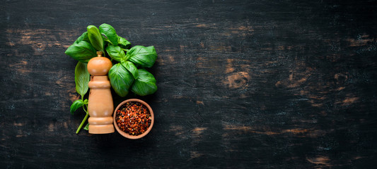 Fresh basil and spices. On a black wooden background. Top view. Free copy space. © Yaruniv-Studio