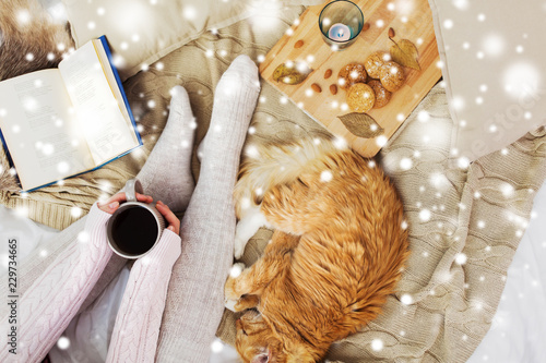 Leinwanddruck Bild pets, hygge and winter concept - woman with coffee, book, cookies and red tabby cat sleeping on blanket at home over snow