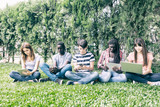 Group of multi ethnic teenagers making lesson on the grass - 229756613