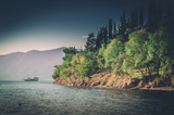 Adriatic sea with growing cypress and pine trees.Distant ship,sailboat. - 229758841
