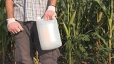 Farmer holding pesticide chemical jug in cornfield. Blank unlabeled bottle as mock up copy space for herbicide, fungicide or insecticide used in corn crop farming. - 229781087