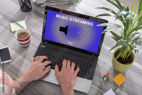 Music streaming concept on a laptop - 229809079