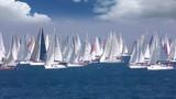 Regatta Barcolana, Sailing boat race in the Gulf of Trieste, Italy  - 229815242