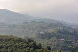 Bewaldete Hügel am Mittelmeer in Wolken - 229819805