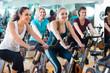 Females cycling in sport club .