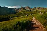 Beautiful landscape view of gasienicowa valley. Polish Tatra mountains