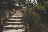 old stone stairs in dry autumn forest outdoor park nature scenery landscape