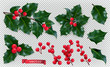 Christmas decorations. Holly, red berries. 3d realistic vector icon set