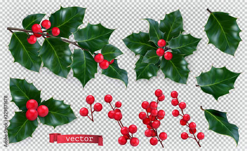 Christmas decorations. Holly, red berries. 3d realistic vector icon set - 229871678