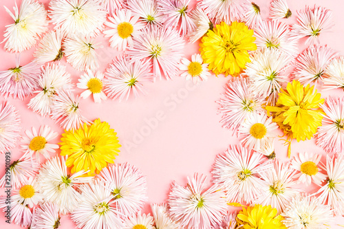 Foto Murales Frame of white asters flowers on a pink background with copy space.