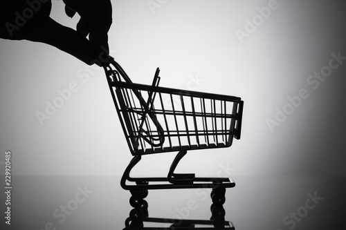 Wall mural Person Holding Shopping Cart