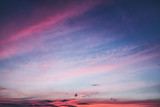 Ciel coloré en fin de journée