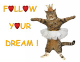 The cat ballerina is dancing. Follow your dream! White background.