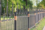fence with gold decoration - 229966234