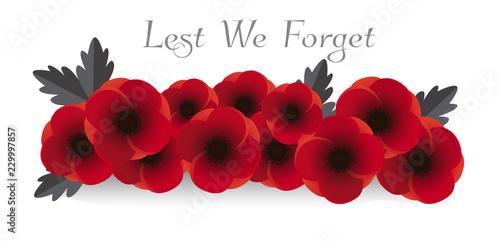 Remembrance day vector. Poppy flowers on white background illustration. 11th of November header illustration.