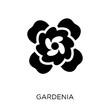 Gardenia icon. Gardenia symbol design from Nature collection.