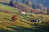 Beautiful autumn colors on the Romanian hills.  Colourful autumn landscape - 230045291