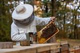 Imker beim Kontrollieren seiner Bienenvölker