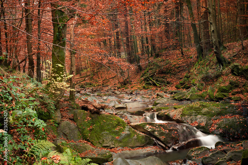 Small mountain waterfall in autumn. A beautiful landscape full of peace. Looking at the picture, you can relax and think. - 230132421