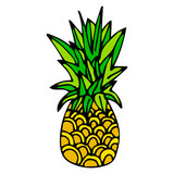 Hand drawn yellow and green pineapple with black outline isolated on white background. Cartoon pineapple. Vector illustration. - 230132875