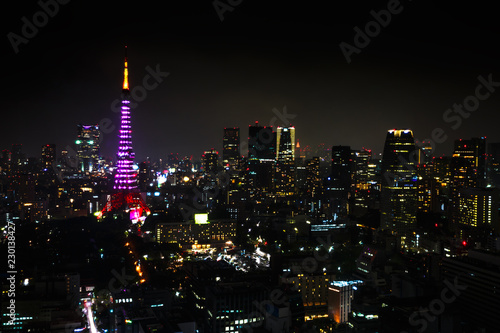 Leinwanddruck Bild Aerial view over Tokyo tower and Tokyo cityscape view from Tokyo World Trade Center at night, Tokyo, Japan.