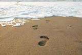 Footsteps - 230167299