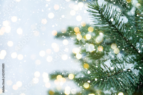 Closeup of Christmas tree with light, snow flake. Christmas and New Year holiday background. vintage color tone. - 230176881
