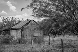 Casa abandonada en paisaje rural (blanco y negro) - 230281476