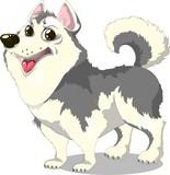 illustration of dog