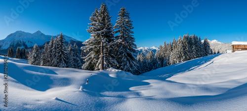 Leinwanddruck Bild Winter in den Aelpen